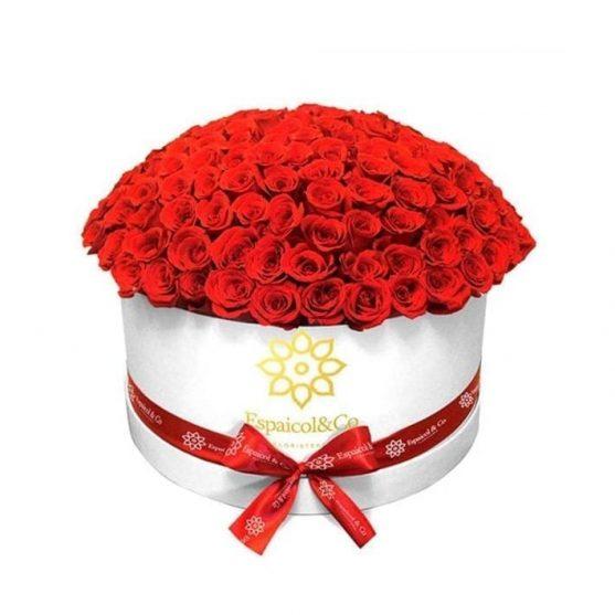 rosas-rojas-home