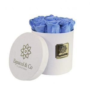 satorini azul claro tapa