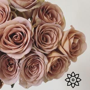 Conoce las razones por las que debes regalar flores.