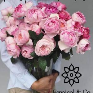 Las mejores flores para regalar a tu pareja.